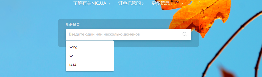 乌克兰免费.PP.UA个人域名